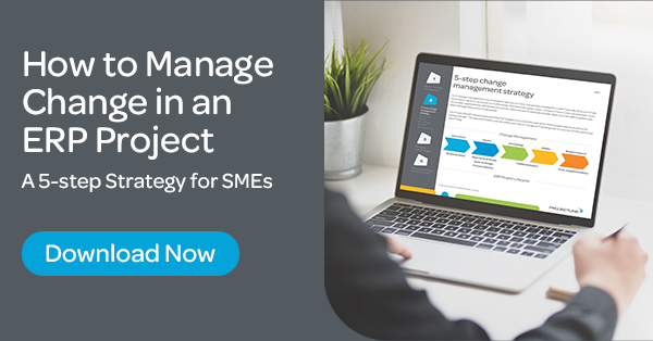 [Download] SME Guide to a Pain-free ERP Implementation