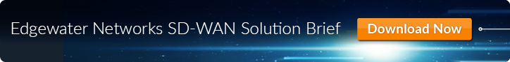 Image Call to Action for the Edgewater Networks SD-WAN Solution brief with a download now button.