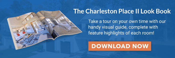 Click to download the Charleston Place II Model Look Book now