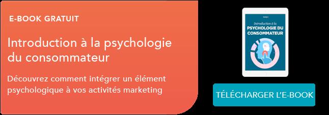 Téléchargez le guide de l'introduction à la psychologie  du consommateur