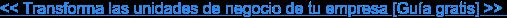 << Transforma las unidades de negocio de tu empresa [Guía gratis] >>