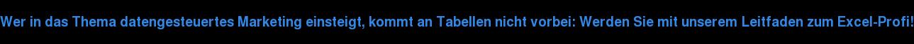 Wer in das Thema datengesteuertes Marketing einsteigt, kommt an Tabellen nicht  vorbei: Werden Sie mit unserem Leitfaden zum Excel-Profi!