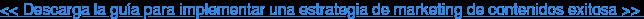 << Descarga la guía para implementar una estrategia de marketing de contenidos  exitosa >>