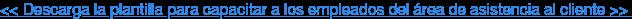 << Descarga la plantilla para capacitar a los empleados del área de asistencia  al cliente >>