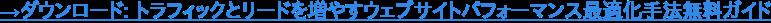→ダウンロード: トラフィックとリードを増やすウェブサイトパフォーマンス最適化手法無料ガイド
