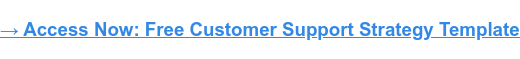 Access Now: Free Customer Support Strategy Template