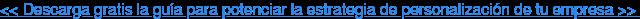 << Descarga gratis la guía para potenciar la estrategia de personalización de  tu empresa >>