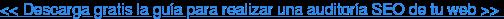 << Descarga gratis la guía para realizar una auditoría SEO de tu web >>