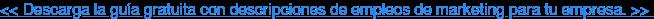 << Descarga la guía gratuita con descripciones de empleos de marketing para tu  empresa. >>