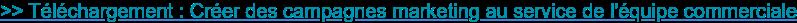 >> Téléchargement : Créer des campagnes marketing au service de l'équipe  commerciale
