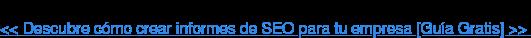 << Descubre cómo crear informes de SEO para tu empresa [Guía Gratis] >>