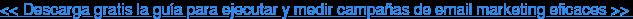 << Descarga gratis la guía para ejecutar y medir campañas de email marketing  eficaces >>