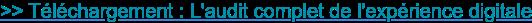 >> Téléchargement : L'audit complet de l'expérience digitale
