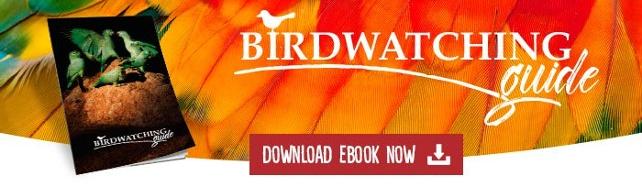 DOWNLOAD BIRDWATCHING GUIDE