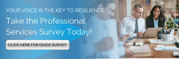 Professional Services Survey