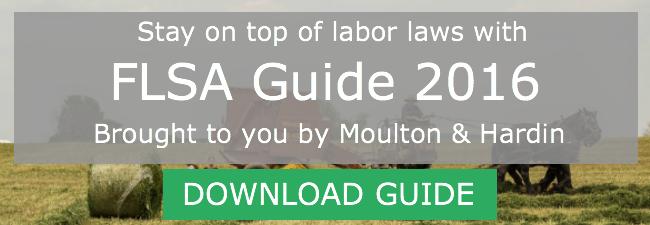 FLSA Guide