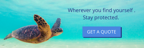 Explore the ocean. Explore the world. But Always Buy Travel Insurance.png