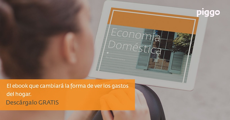 ebook - Economia Domestica Vol. 1
