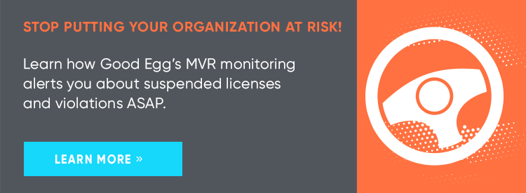 Learn More about Good Egg's MVR Monitoring