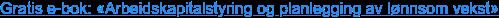 Last ned gratis e-bok: «Arbeidskapitalstyring og planlegging av lønnsom vekst»
