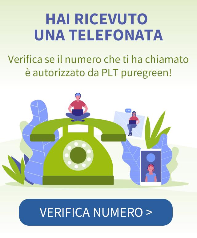 Verifica Numero di Telefono