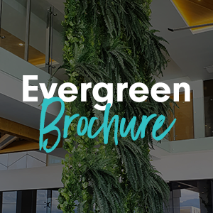 Evergreen Walls Brochure