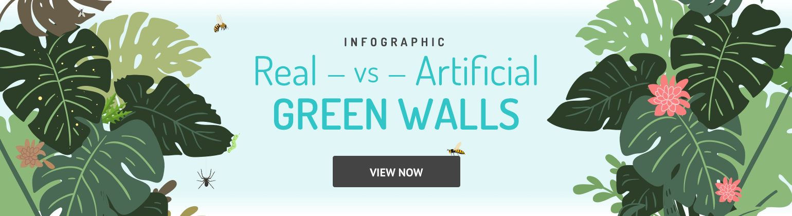 real vs artificial green walls infographic