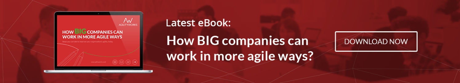 How big companies can work in more agile ways