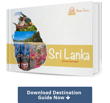 Download Sri Lanka Destination Guide