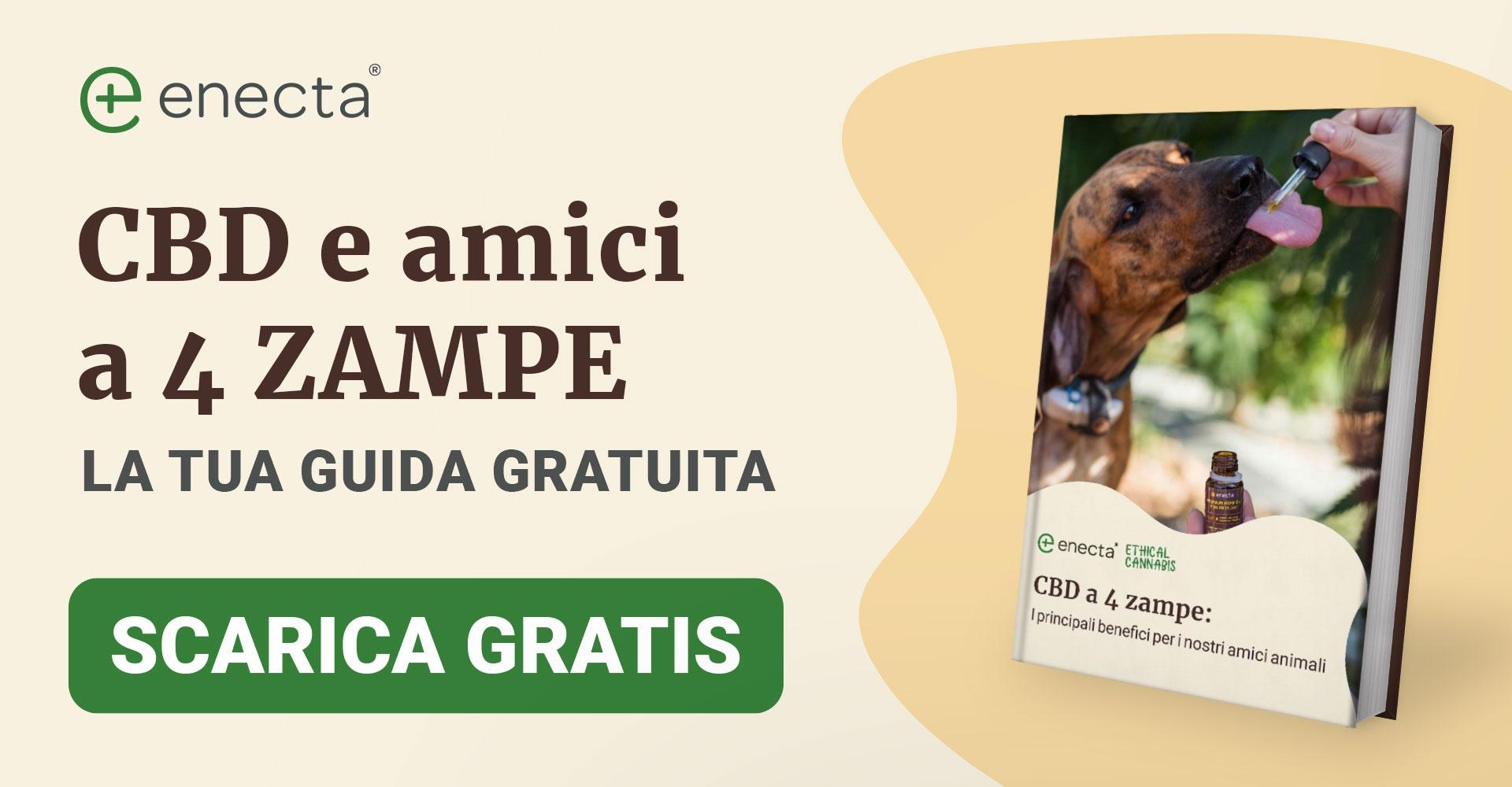 Rimedi naturale per la salute degli animali domestici