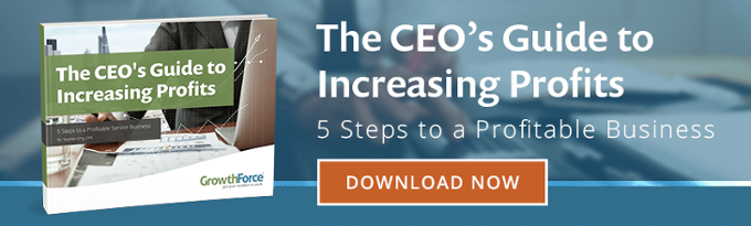 The CEO's Guide to Increasing Profits: 5 Steps to a Profitable Business