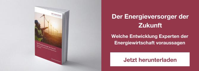 CTA Studie Energieversorger Zukunft