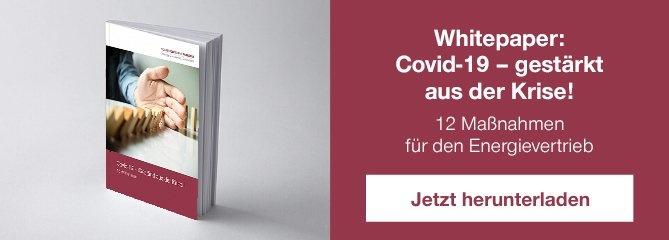 Whitepaper Download - Covid19 gestärkt aus der Krise