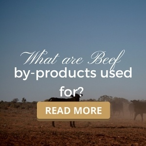 What are beef by-products used for?