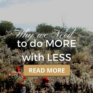 Why we need to do more with less