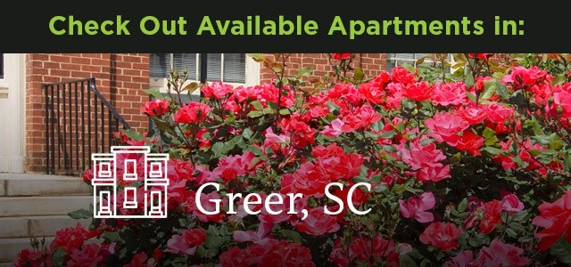 Check out available Apartments in Greer, SC