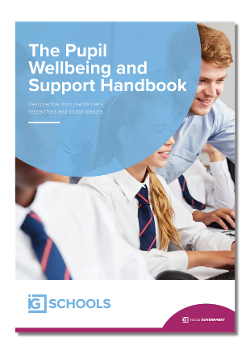 Pupil Wellbeing and Support Handbook