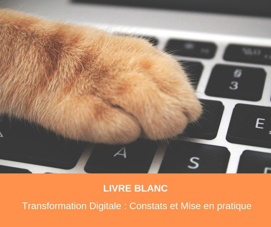 Livre Blanc FORSTAFF : Transformation Digitale Constats et Mise en pratique
