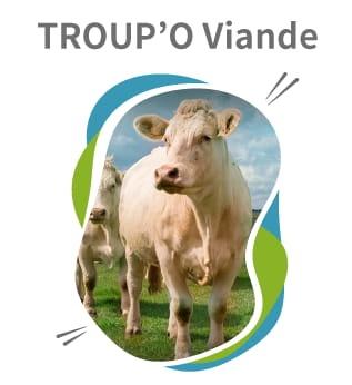 Troup'O Lait logiciel de gestion de troupeau bovin allaitant