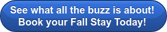 See what all the buzz is about! Book your Fall Stay Today!