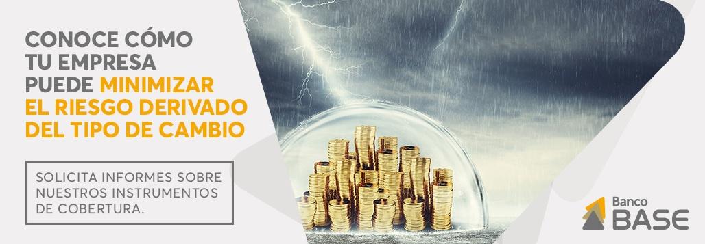 Minimiza el riesgo derivado del tipo de cambio
