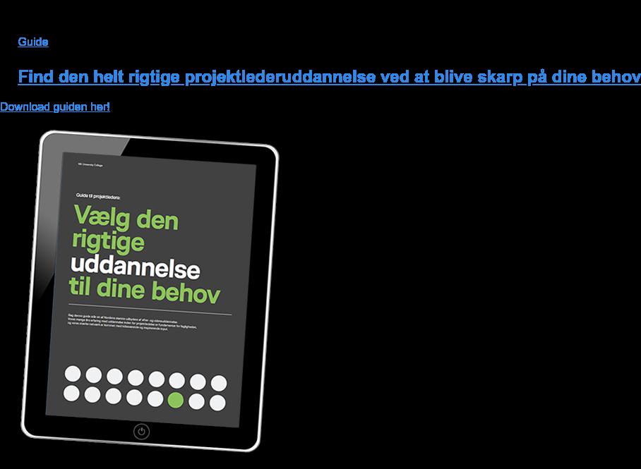 E-bog  Projektledelse Lorem ipsum dolor sit amet, consetetur sadipscing elitr Download e-bog