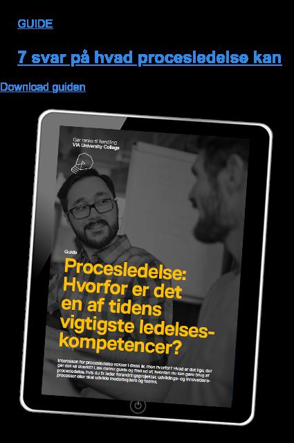 GUIDE  7 svar på hvad procesledelse kan Download guiden
