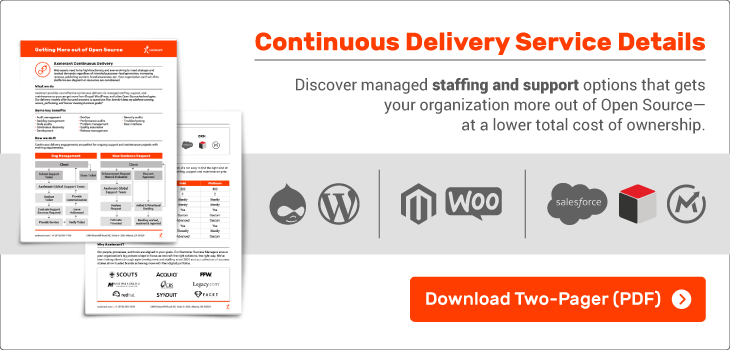 Continuous Delivery Staffing & Support