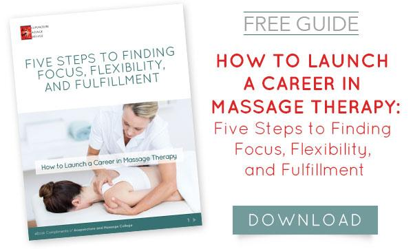 Launch-Career-Massage-Therapy-Book