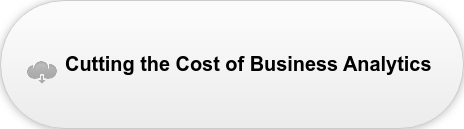 Cutting the Cost of Business Analytics