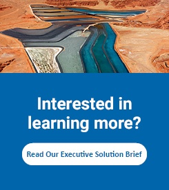 Interested in learning more? Read Our Executive Solution Brief