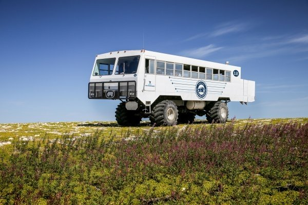 Frontiers North's Tundra Buggy adventure in Churchill, Manitoba.