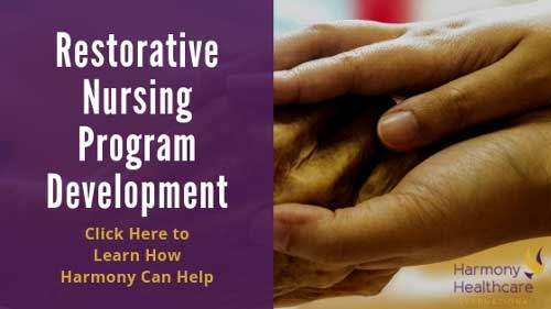 Restorative Nursing Program Development