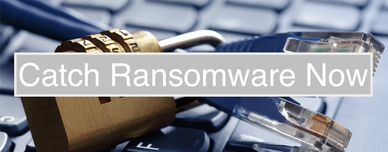 Catch Ransomware Now